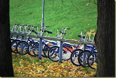 2011-10-30 Public Bikes