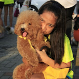 Pet Express Doggie Run 2012 Philippines. Jpg (120).JPG