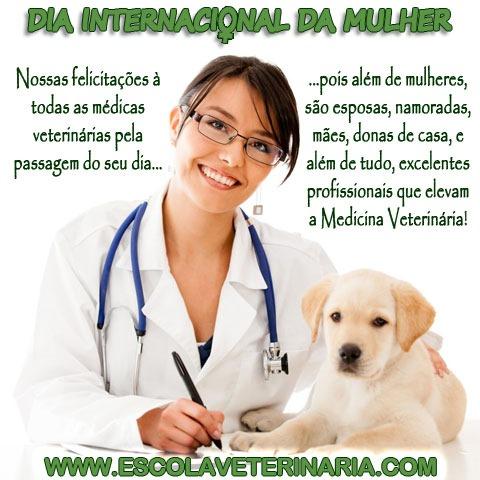 Dia Internacional da Mulher - Parabéns à todas as Médicas Veterinárias
