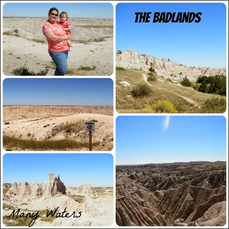 Many Waters Badlands Collage