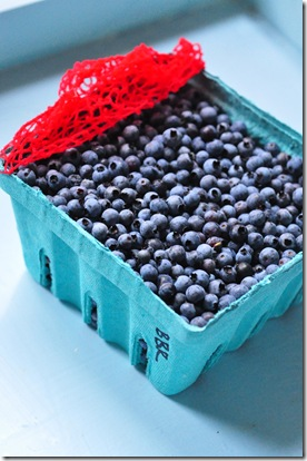 maine_blueberries