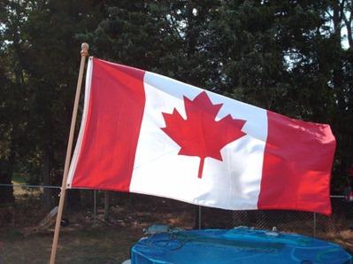 2009 flag