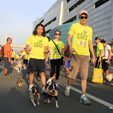 Pet Express Doggie Run 2012 Philippines. Jpg (127).JPG