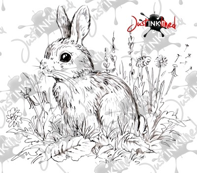 Meadow_Rabbit_WM