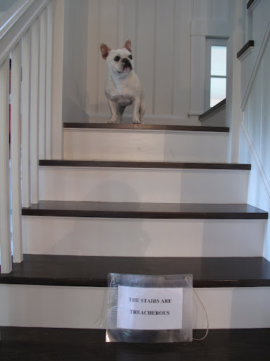 Now I'm really scared to come down the stairs.  The sign says they're TREACHEROUS!