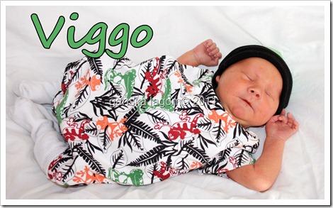 viggo 9 dagar