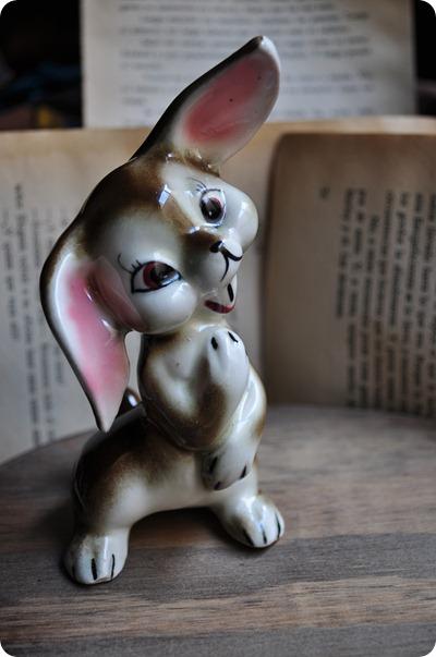227 conejo