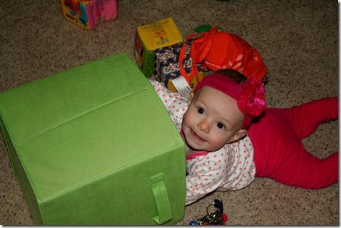 Finley in green bin