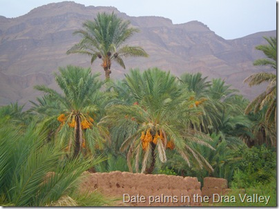 Draa Valley and Atlas Mountains