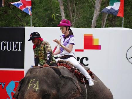 29. Ladyboy pe elefant.JPG