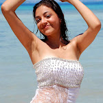 kajal-agarwal-photos-53.jpg