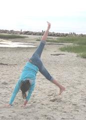 Corporation Beach sunset Lily cartwheels4...8.19