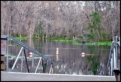07 - Kayak Launch