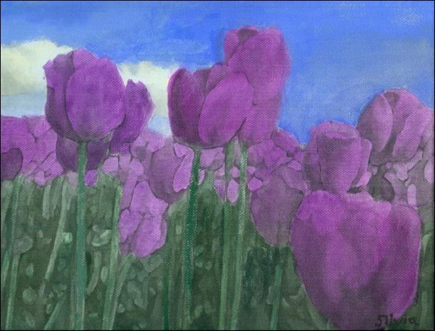 campo de tulipanes violetas