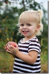 Apple picking Sadie 9