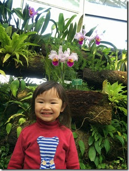 botanical gardens (4)