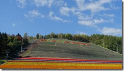 螢幕截圖 2014-12-20 09.44.32