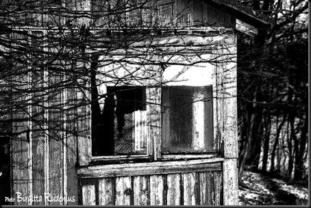 bw_20120124_emtyhouse11