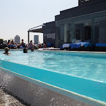 thompson roof top pool in Toronto, Ontario, Canada