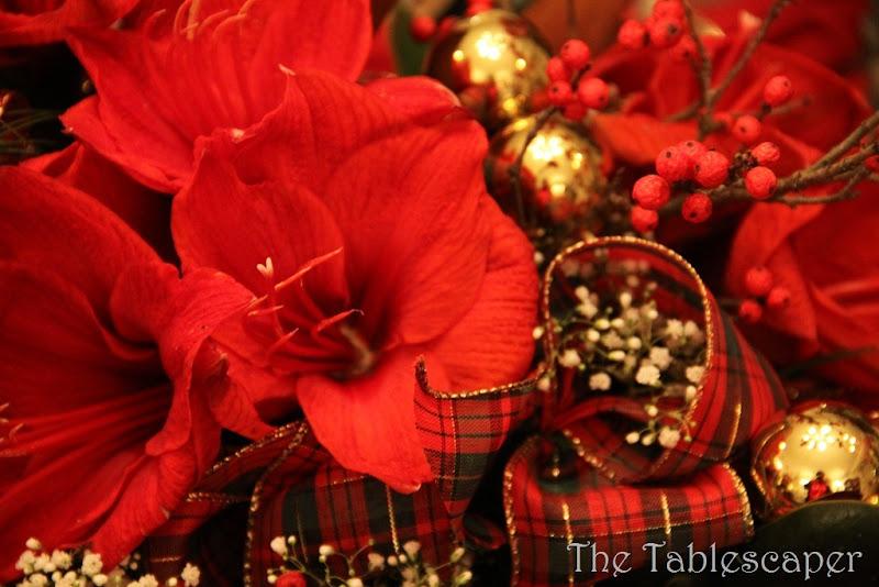Christmas 2011 111