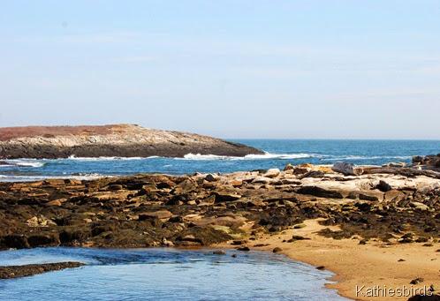 6. open ocean-kab