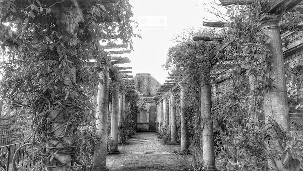 Hill Garden and Pergola3.jpg