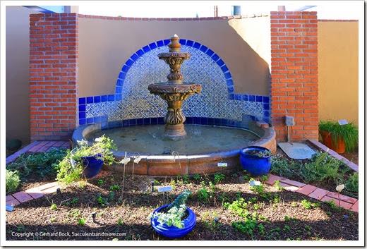 131203_TucsonBotanicalGarden_007