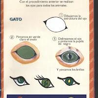 Cómo Pintar Ojos (15).jpg