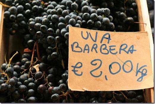 uva-barbera-vinho-e-delicias