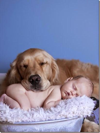 bebe-chicos-perro-mascotas-getty_MUJIMA20140109_0032_30