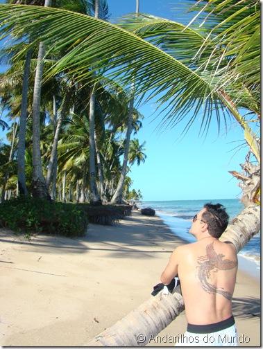 Praia do Patacho Coqueiros Alagoas Brasil