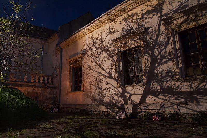 Свірзький замок вночі
