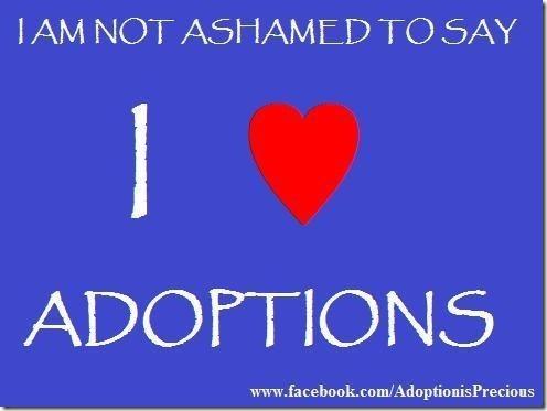 adopcoon (1)