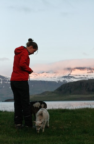 Iceland-3377