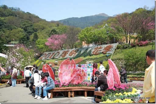 2010陽明山花季-廣場