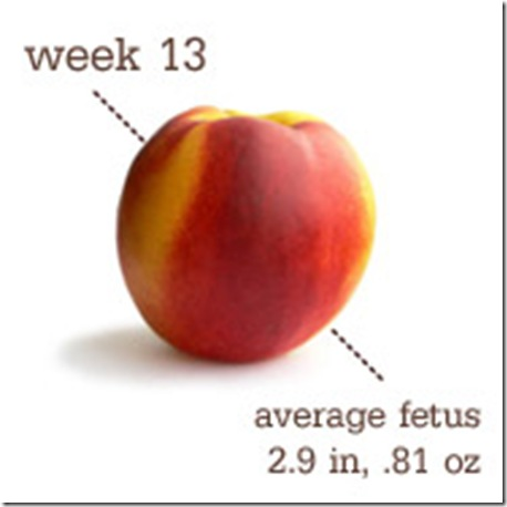 Peach - 13 Weeks