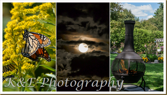 September 2014PicMonkey Collage