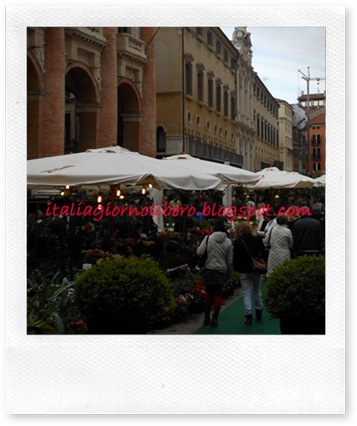 igl Vicenza centro