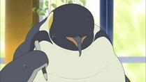 [HorribleSubs] Polar Bear Cafe - 13 [720p].mkv_snapshot_07.33_[2012.06.28_11.14.27]
