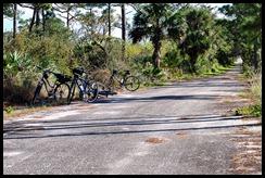 Guarding the Bikes 2