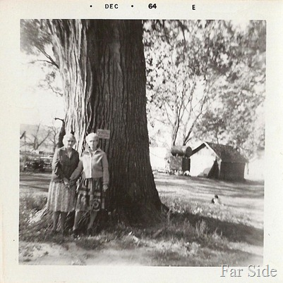 Tracie and Emma 1964 By the tree on their homeplace near logan iowa