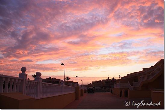 Torrevieja nov 2009 001
