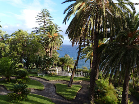 Cazare Madeira: gradina Reid's