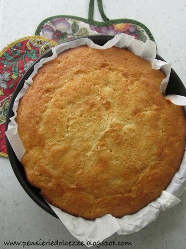 Torta Cocco Albicocche 3