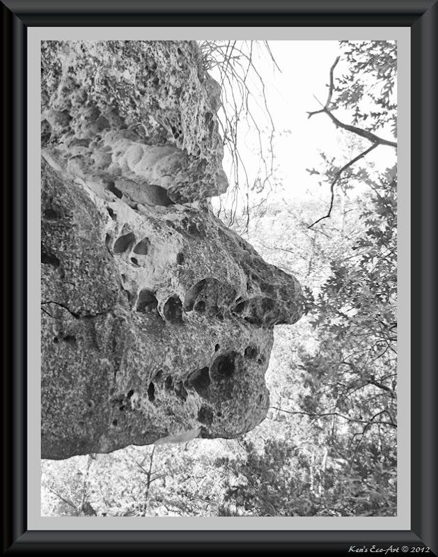 IMG_1500 (B&W)(Framed)