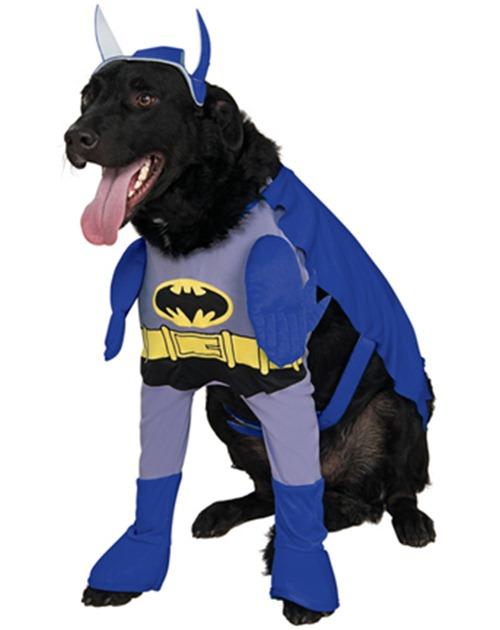 Gatos_caes_Batman02