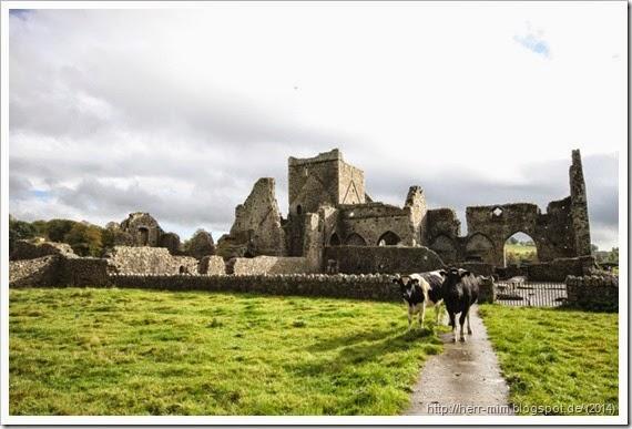 Urlaub Irland 154