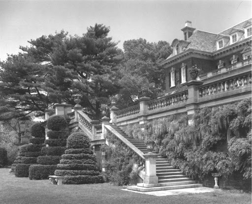 The terraced staircase leading to the South lawn. So romantic.  I really love the clipped shrubs and if you look closely , you can see the giant wisteria vine covering the brick wall.