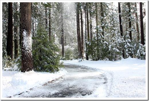 120413_snow7