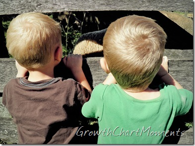 I'm so glad I like the backs of their heads!!! That's allI can ever get of our toddlers